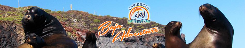 CST Baja Adventure 2014